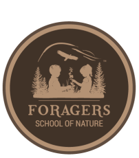 Foragers School of Nature  |  Squamish BC